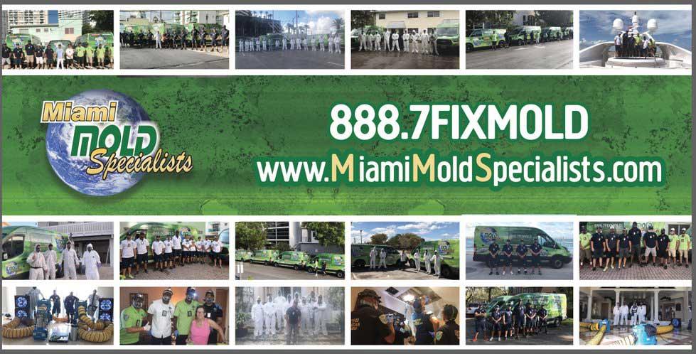South Florida's #1 Mold Remediaton Company