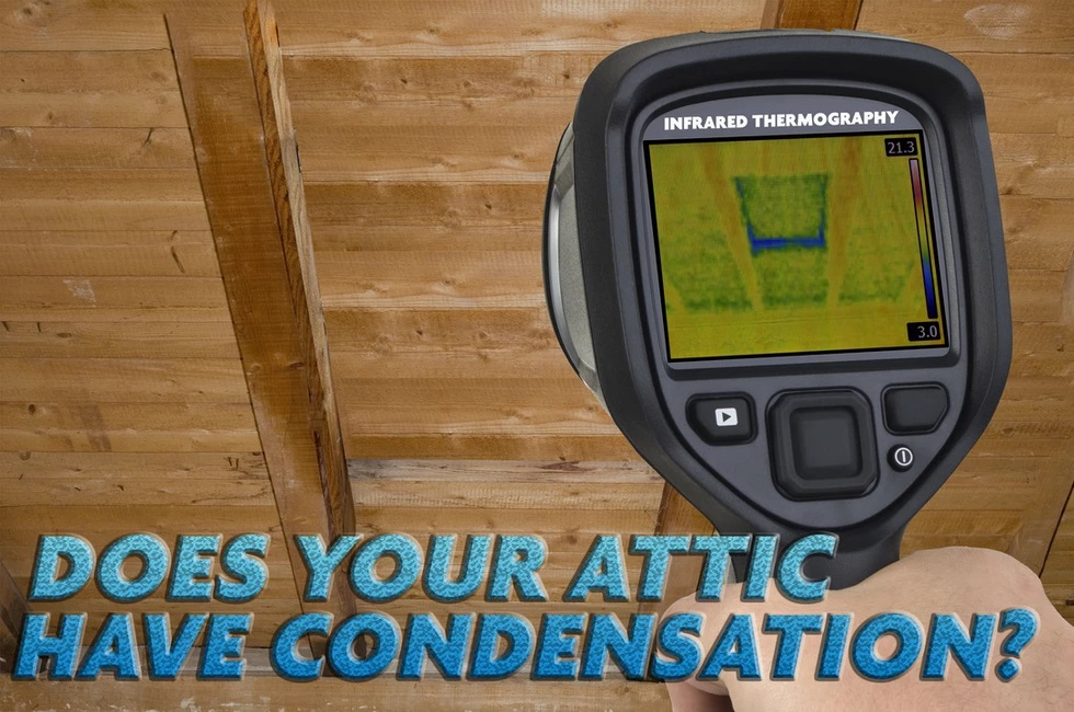 Does Your Attic Have Condensation